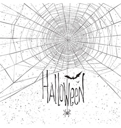 halloween background spider web white vector image