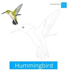 Hummingbird bird learn to draw vector image