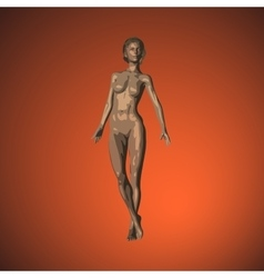Realistic female figure with smooth skin and fit vector