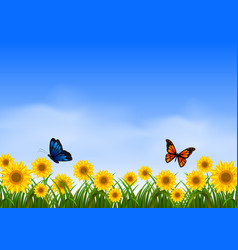 two butterfly flying in sunflower garden vector image