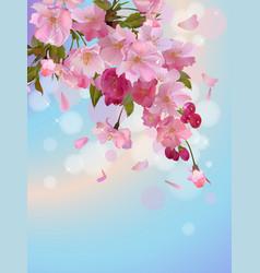 vertical background with sakura branch of vector image