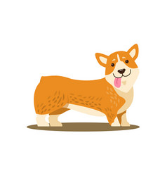 dog with tongue and smile vector image vector image