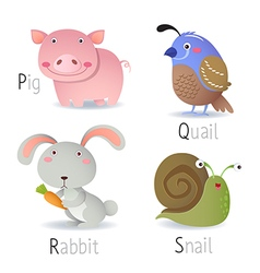 Alphabet with animals from P to S vector image