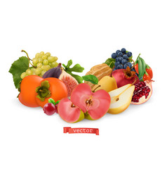 Autumn fruits and berries pear pink apple white vector