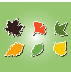 set of color icons with different leaves vector image vector image