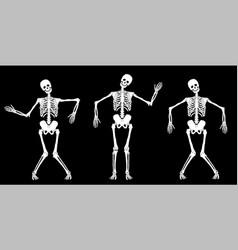 white dancing skeletons vector image