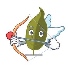 Cupid bay leaf character cartoon vector