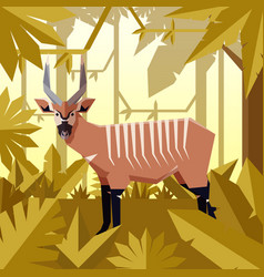 flat jungle background with bongo antelope vector image