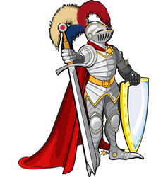 knight in shine armor vector image
