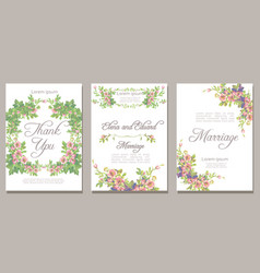 set card with flower rose leaves wedding ornament vector image