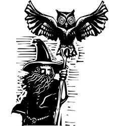 wizard with owl vector image