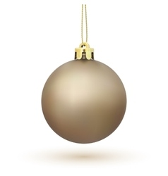 Christmas Tree decoration isolated on white vector image vector image