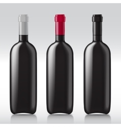 Set realistic glass bottles for wine vector image vector image