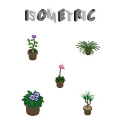 Isometric plant set of grower flower flowerpot vector