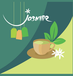 Jasmine tea organic drink vector