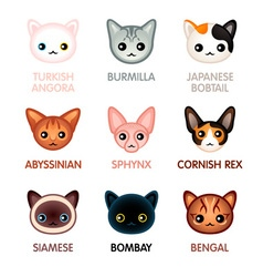 Kawaii cats - Set I vector image