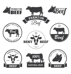 Beef labels vector image