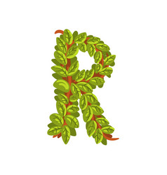 letter r english alphabet made of tree branches vector image