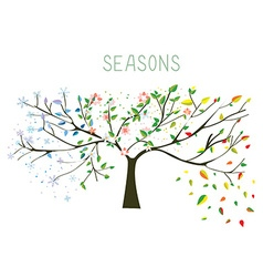 Tree during four seasons concept vector