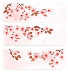Three spring banners with blossoming branches with vector image vector image
