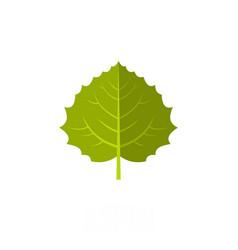 Aspen leaf icon flat style vector