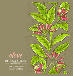 clove background vector image
