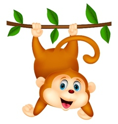 Cute monkey cartoon hanging vector image