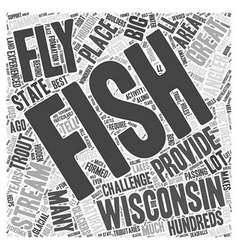 fly fishing wisconsin Word Cloud Concept vector image