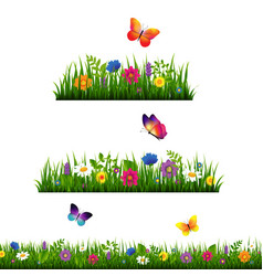 grass border with flower collection vector image