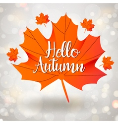 Hello Autumn season design with maple leaf vector image