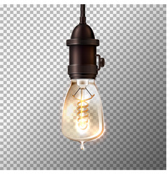 retro light bulb on transparent background vector image
