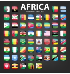 Glossy button flags - Africa Original colors vector image vector image