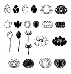 Set of Lotus flowers vector image