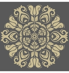 Damask Orient Pattern vector image