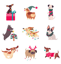 funny dogs with christmas symbols set xmas vector image