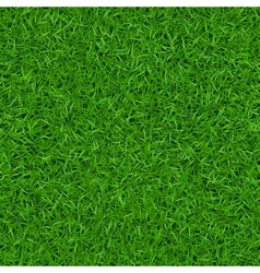 Green grass seamless pattern 1 vector