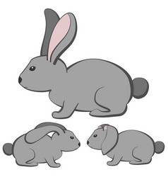 rabbits-2 vector image