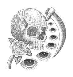 vintage skull eye death vector image