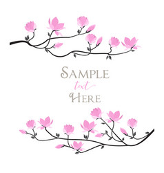 magnolia flowers vector image vector image