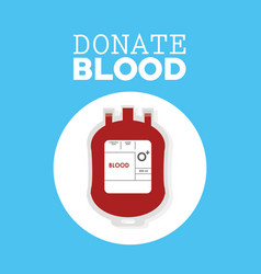donate blood plastic bag vector image vector image