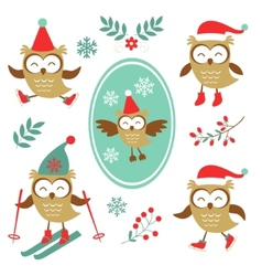 Cute winter owls colorful collection vector image