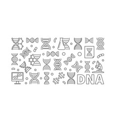 dna horizontal banner or linear vector image