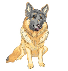 Dog German shepherd breed smile vector