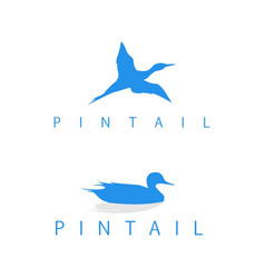 Logo pintail silhouette vector