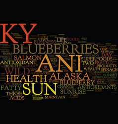 The new ky ani sun the antioxidant leader text vector