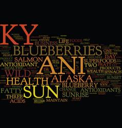The new ky ani sun the antioxidant leader text vector