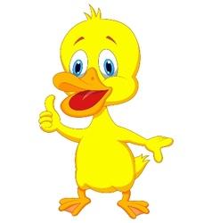 Duck cartoon thumb up vector image
