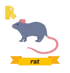 Rat r letter cute children animal alphabet in vector