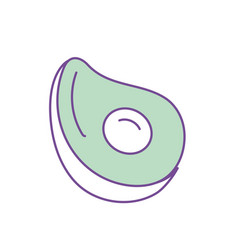 Delicious and healthy avocado fruit vector