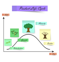 Product life cycle as sticky notes on white vector